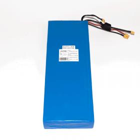 48V 15.6Ah battery for Z8PRO